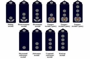 Ромашки вместо звезд на украинских погонах