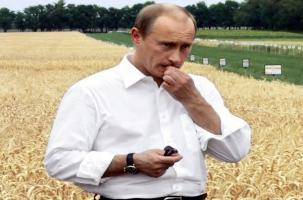 Россия вводит встречные санкции