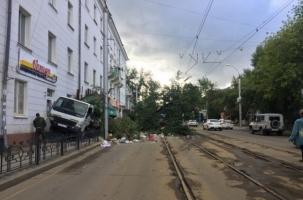 Дерево напало на мусоровоз