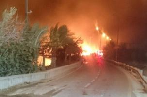 Израиль: идет эвакуация из горящей Хайфы